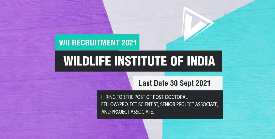 WII Recruitment 2021 Job Listing thumbnail.